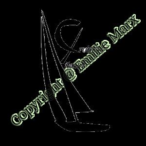 création de logo croisière kitesurf